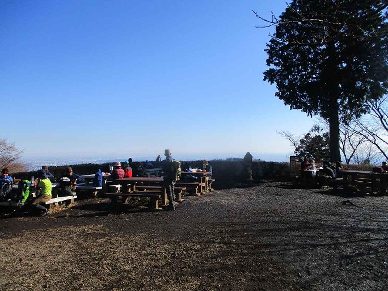 画像4: 12月29日と30日に山旅会現地ツアー 「城山から高尾山」 に行ってきました!