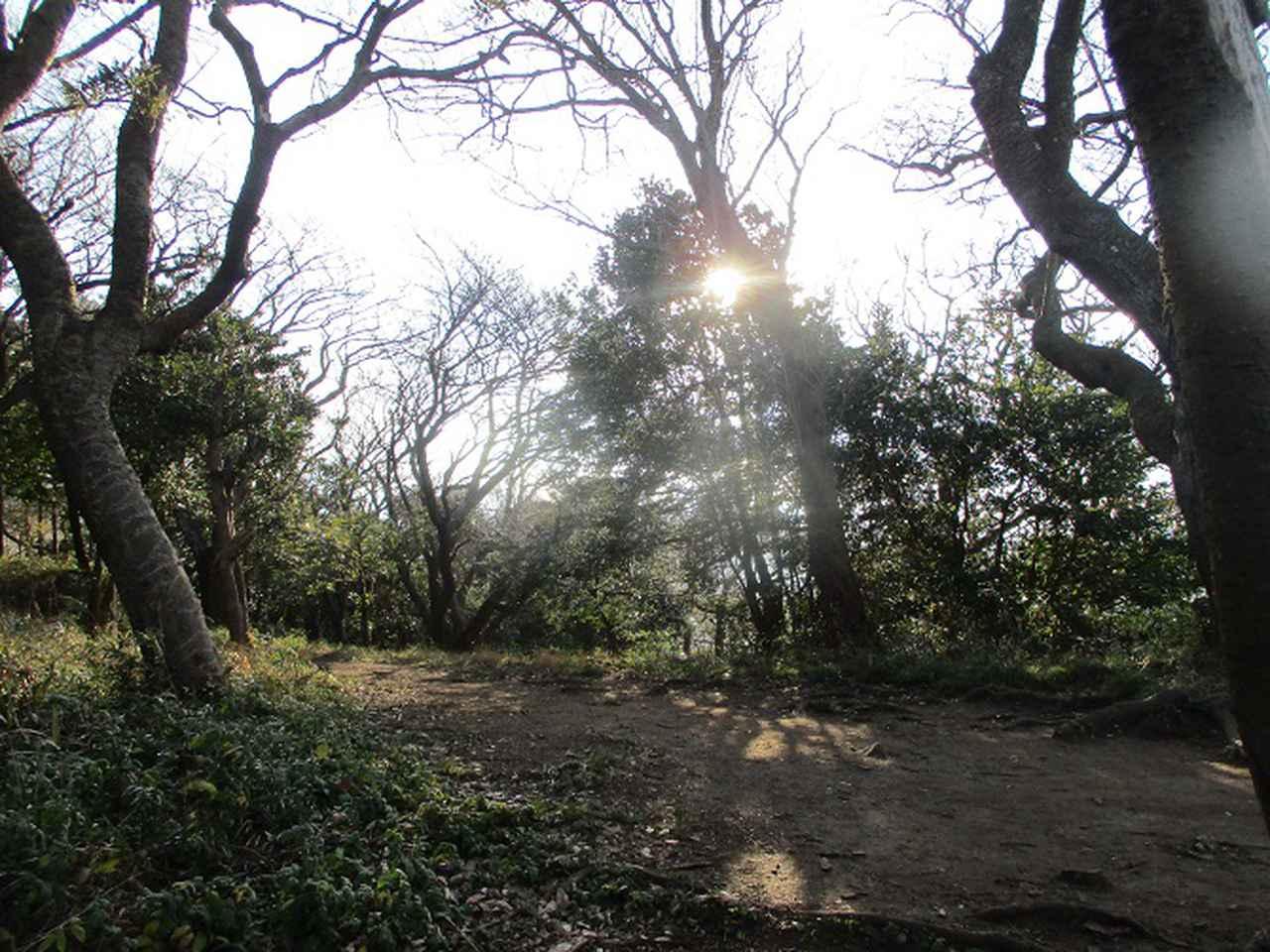 画像2: 1月の山旅会現地集合ツアー 「阿部倉山から二子山」 ツアーの下見に行ってきました!