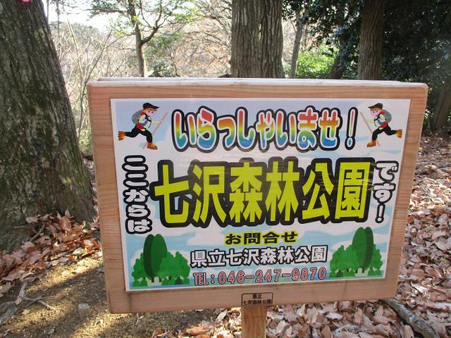 画像8: 丹沢白山の下見に行ってきました! (1月に現地集合ツアー、2月バス日帰りツアーがあります)