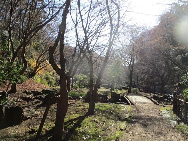 画像11: 丹沢白山の下見に行ってきました! (1月に現地集合ツアー、2月バス日帰りツアーがあります)
