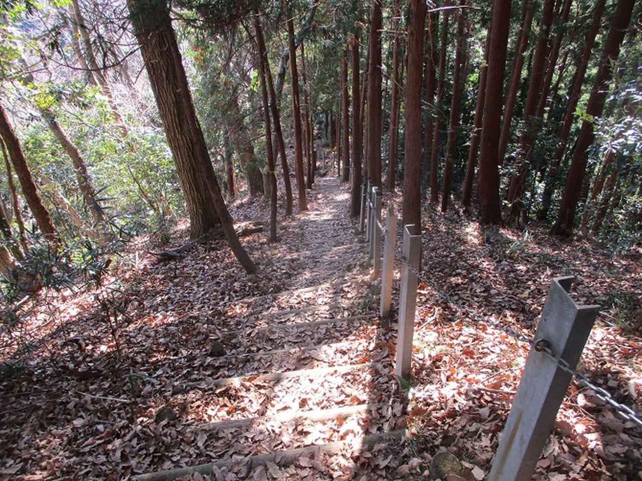 画像7: 丹沢白山の下見に行ってきました! (1月に現地集合ツアー、2月バス日帰りツアーがあります)