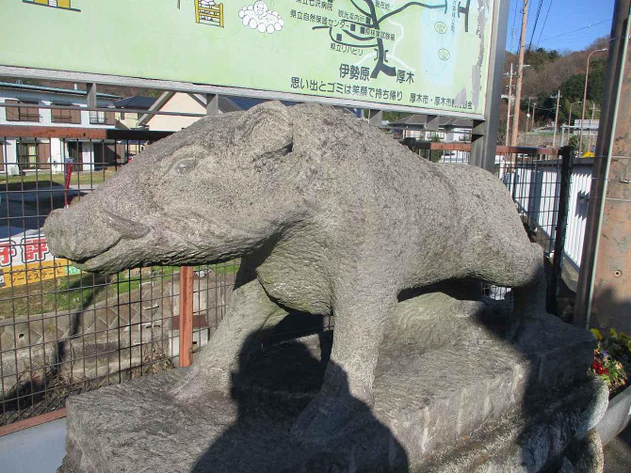 画像12: 丹沢白山の下見に行ってきました! (1月に現地集合ツアー、2月バス日帰りツアーがあります)