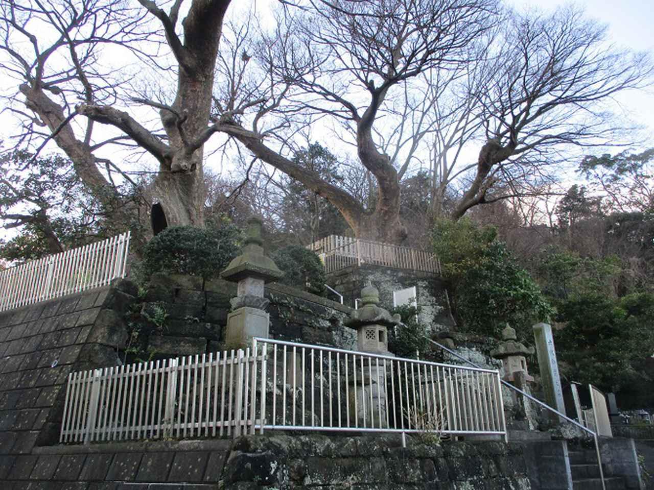 画像1: 1月の山旅会現地集合ツアー 「阿部倉山から二子山」 ツアーの下見に行ってきました!
