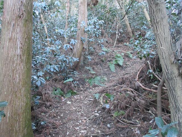 画像8: 1月の山旅会現地集合ツアー 「阿部倉山から二子山」 ツアーの下見に行ってきました!