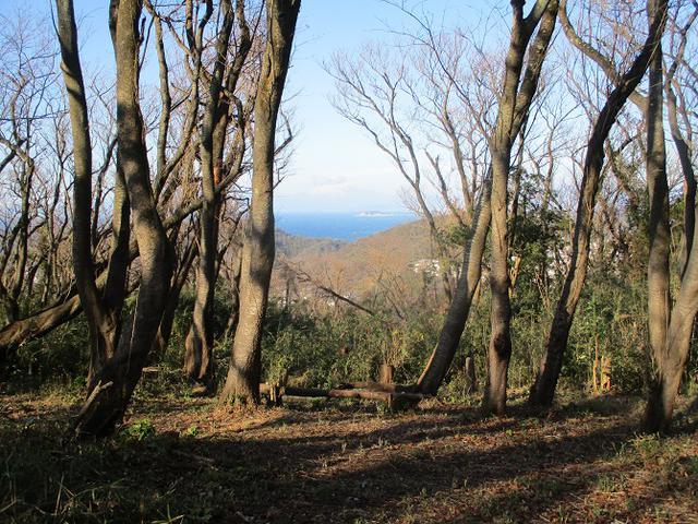 画像7: 1月の山旅会現地集合ツアー 「阿部倉山から二子山」 ツアーの下見に行ってきました!
