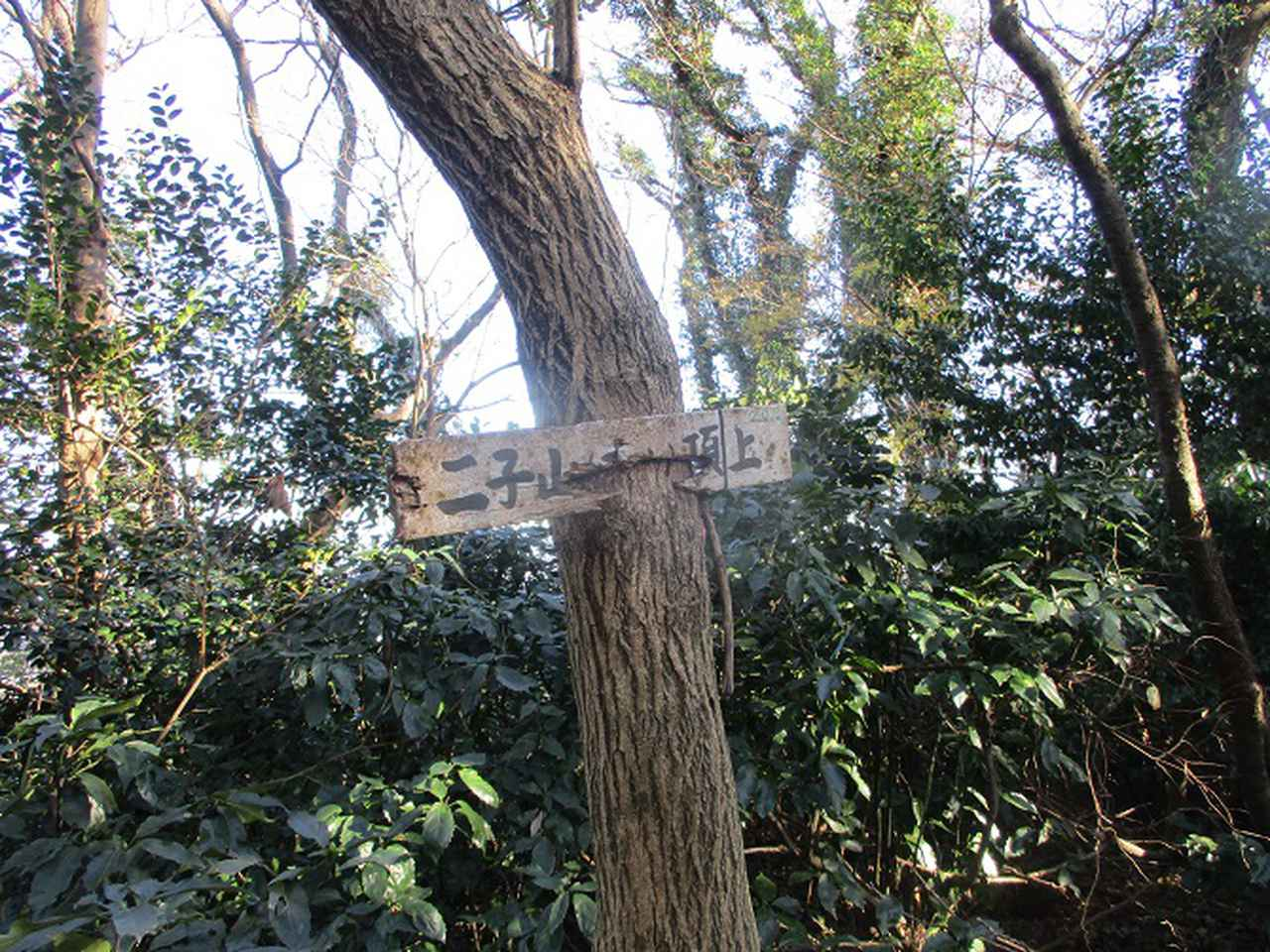 画像9: 1月の山旅会現地集合ツアー 「阿部倉山から二子山」 ツアーの下見に行ってきました!