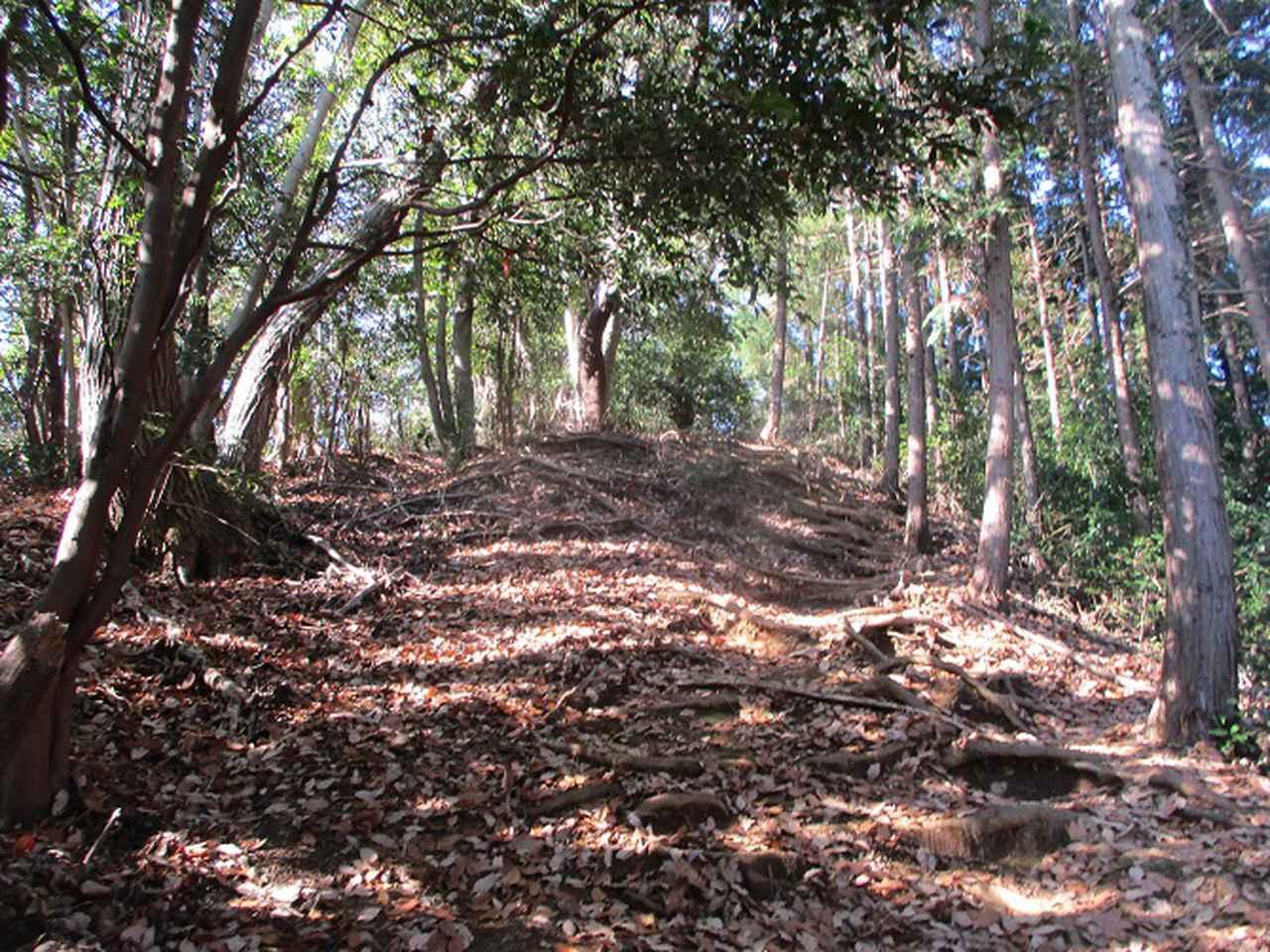 画像2: 1月3日と4日に山旅会現地集合 「駒木野から八王子城址」 ツアーに行ってきました!