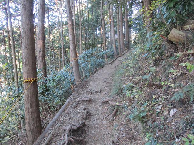 画像5: 1月の山旅会 「満観峰」 と 「満観峰から丸子富士」 ツアーの下見に行ってきました!
