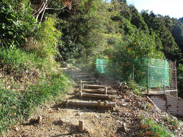 画像3: 1月の山旅会 「満観峰」 と 「満観峰から丸子富士」 ツアーの下見に行ってきました!