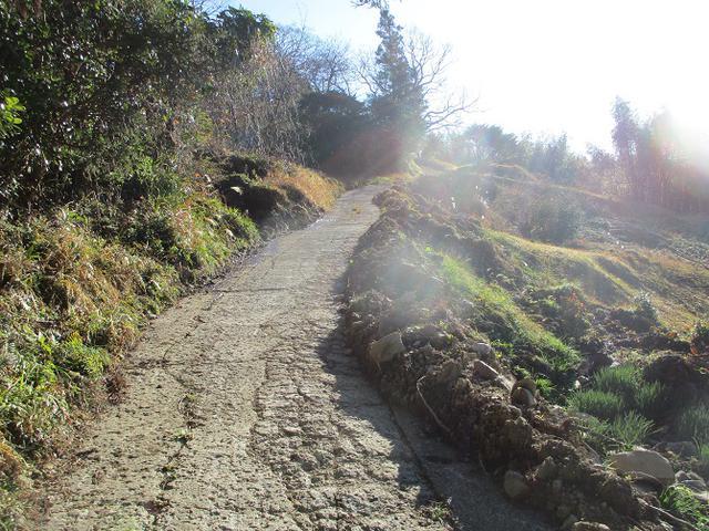 画像5: 1月の山旅会 「をくずれから津森山」 ツアーの下見に行ってきました!