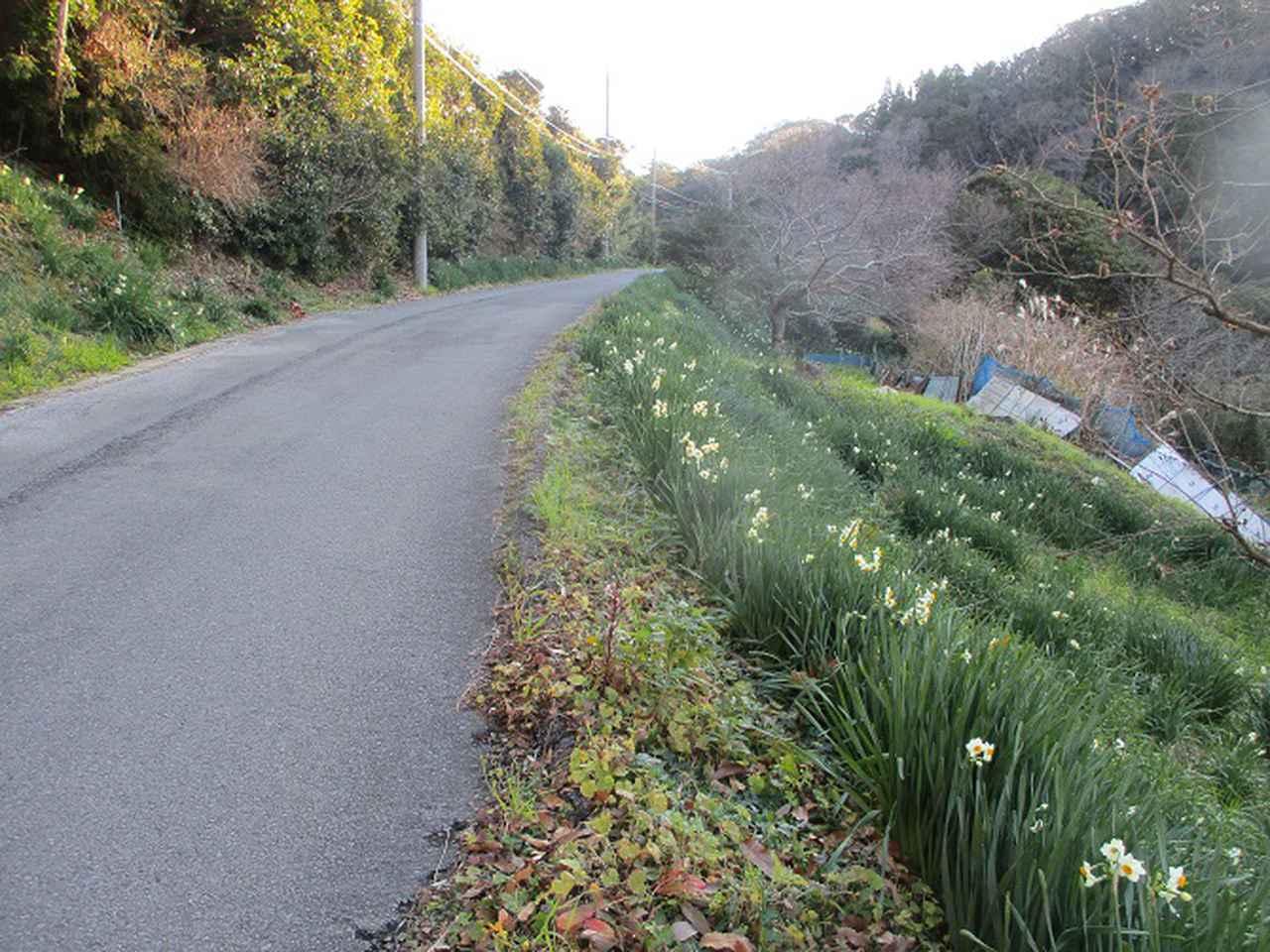 画像3: 1月の山旅会 「をくずれから津森山」 ツアーの下見に行ってきました!