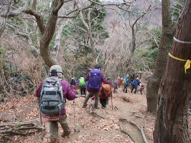 画像6: 1月7日に山旅会 「聖峰から高取山」 ツアーに行ってきました!