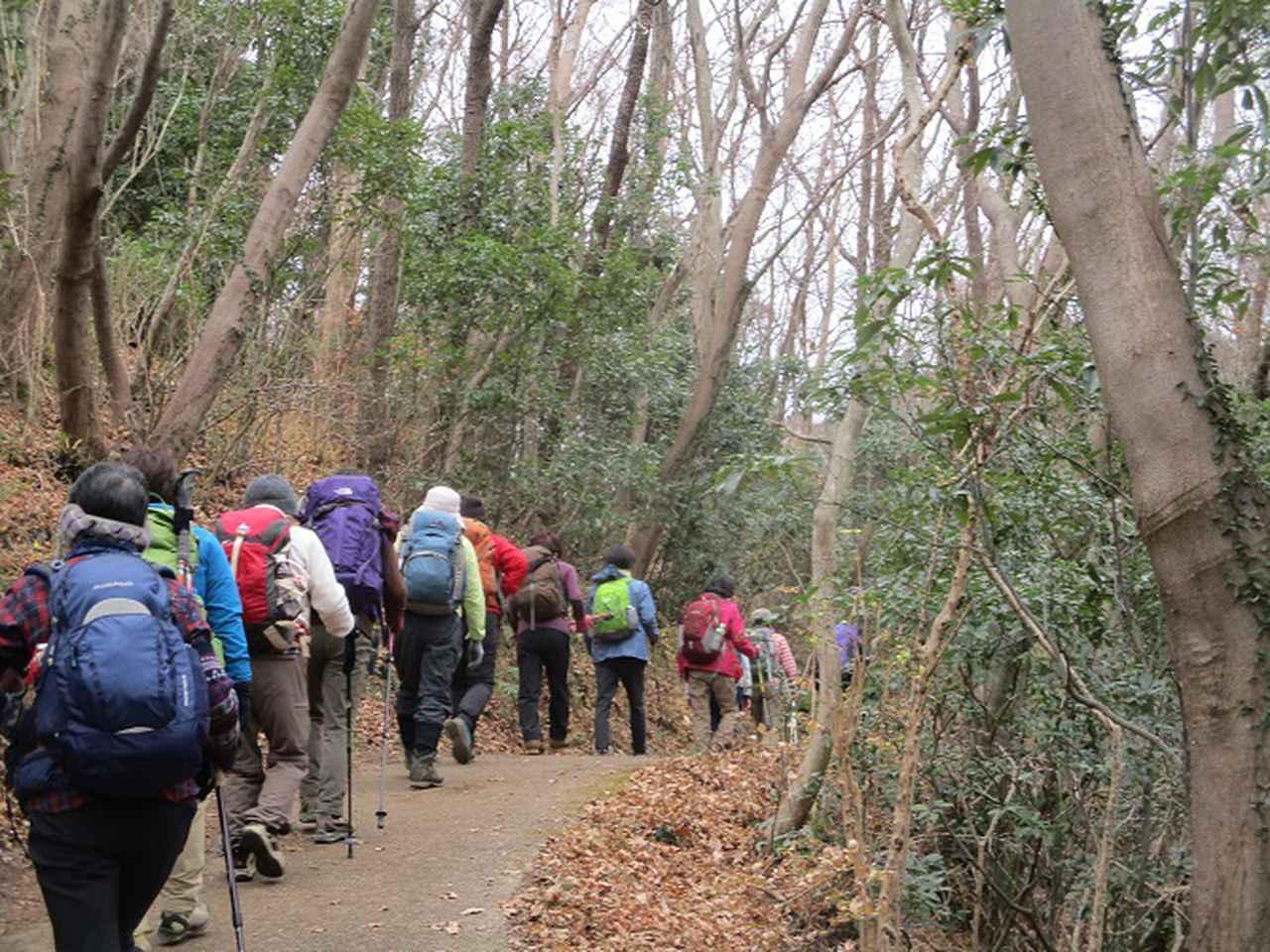 画像1: 1月7日に山旅会 「聖峰から高取山」 ツアーに行ってきました!