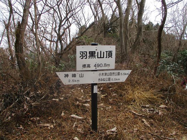 画像7: 1月10日に山旅会 神峰山から鞍掛山 ツアーに行ってきました!