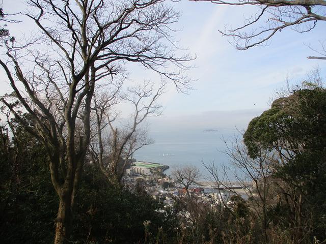 画像1: 1月11日に山旅会現地集合 阿部倉山から二子山 ツアーに行ってきました!