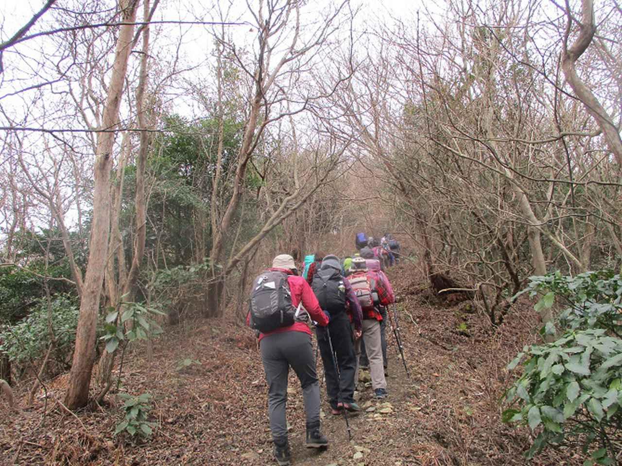 画像5: 1月10日に山旅会 神峰山から鞍掛山 ツアーに行ってきました!
