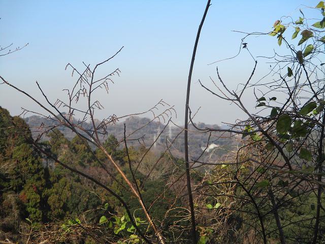 画像11: 1月11日に山旅会現地集合 阿部倉山から二子山 ツアーに行ってきました!