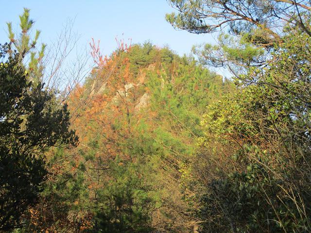 画像6: 来年の冬の企画素材を探して我が故郷・広島の山を歩いてみました!