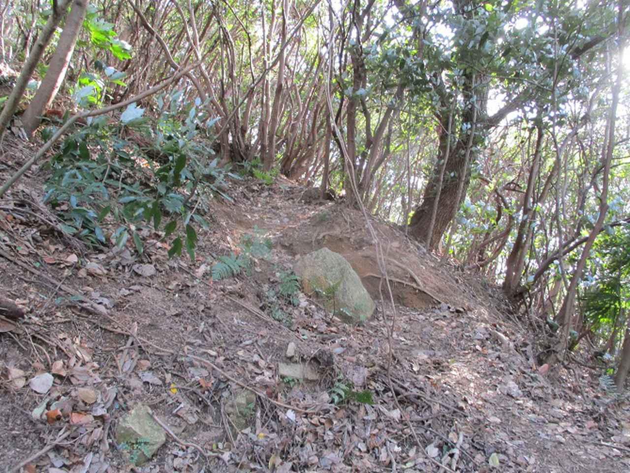 画像3: 来年冬の企画素材を探して、わが故郷・広島県の山を歩いてみました!