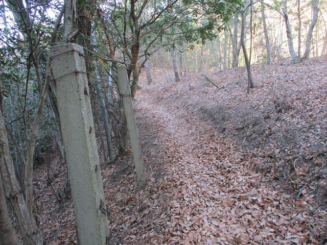 画像4: 来年の冬の企画素材を探して我が故郷・広島の山を歩いてみました!