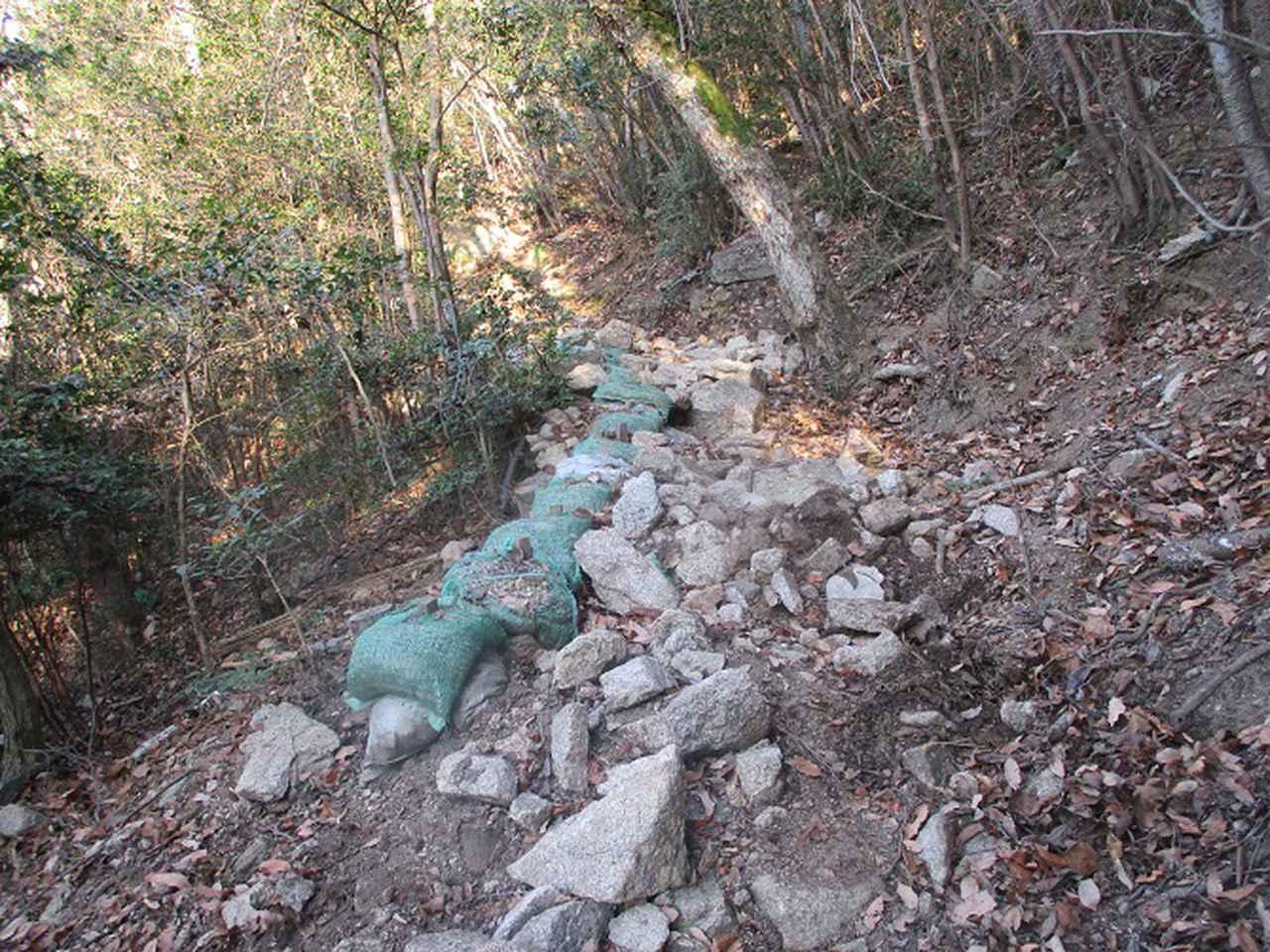 画像5: 来年の冬の企画素材を探して我が故郷・広島の山を歩いてみました!