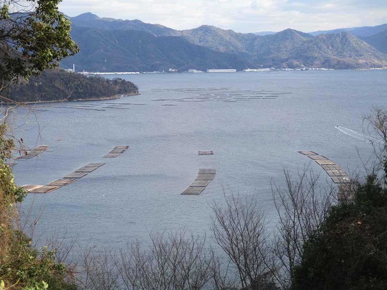 画像7: 来年冬の企画素材を探して、わが故郷・広島県の山を歩いてみました!