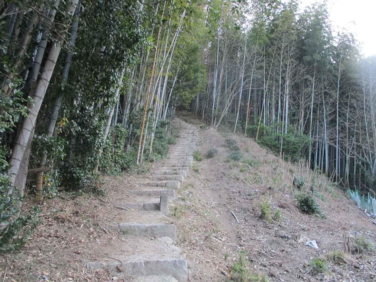 画像2: 来年の冬の企画素材を探して我が故郷・広島の山を歩いてみました!