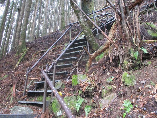 画像7: 来年冬の企画素材を探して静岡県の山を歩いてみました!