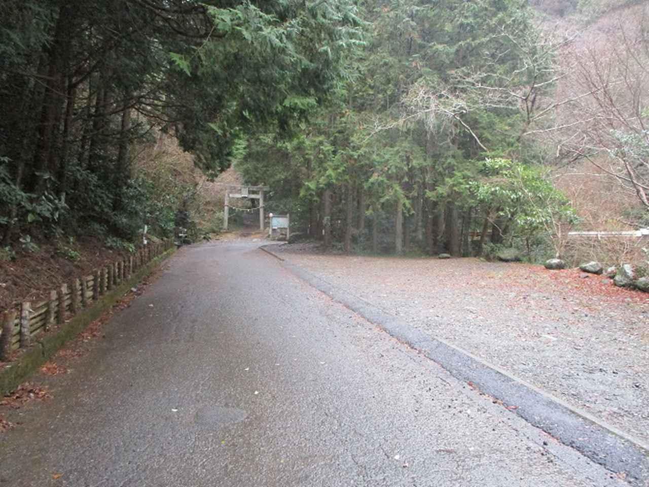 画像1: 来年冬の企画素材を探して静岡県の山を歩いてみました!