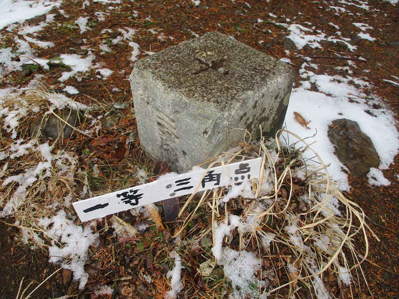 画像12: 来年冬の企画素材を探して静岡県の山を歩いてみました!
