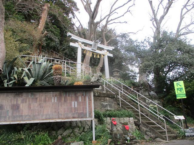 画像2: 来年冬の企画素材を探して静岡県の山を歩いてみました!