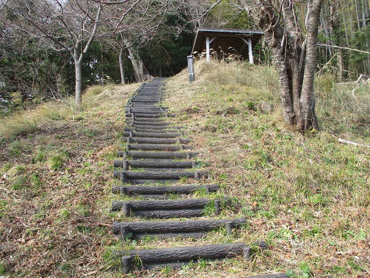 画像13: 来年冬の企画素材を探して静岡県の山を歩いてみました!