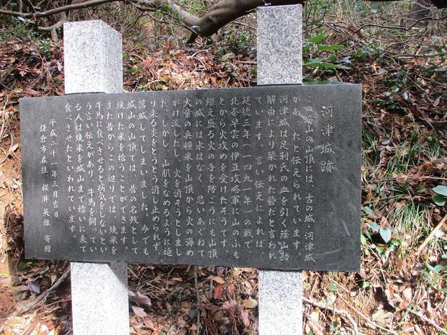画像11: 来年冬の企画素材を探して静岡県の山を歩いてみました!