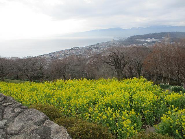 画像: 山旅会ツアー3月までの催行状況のご案内です!