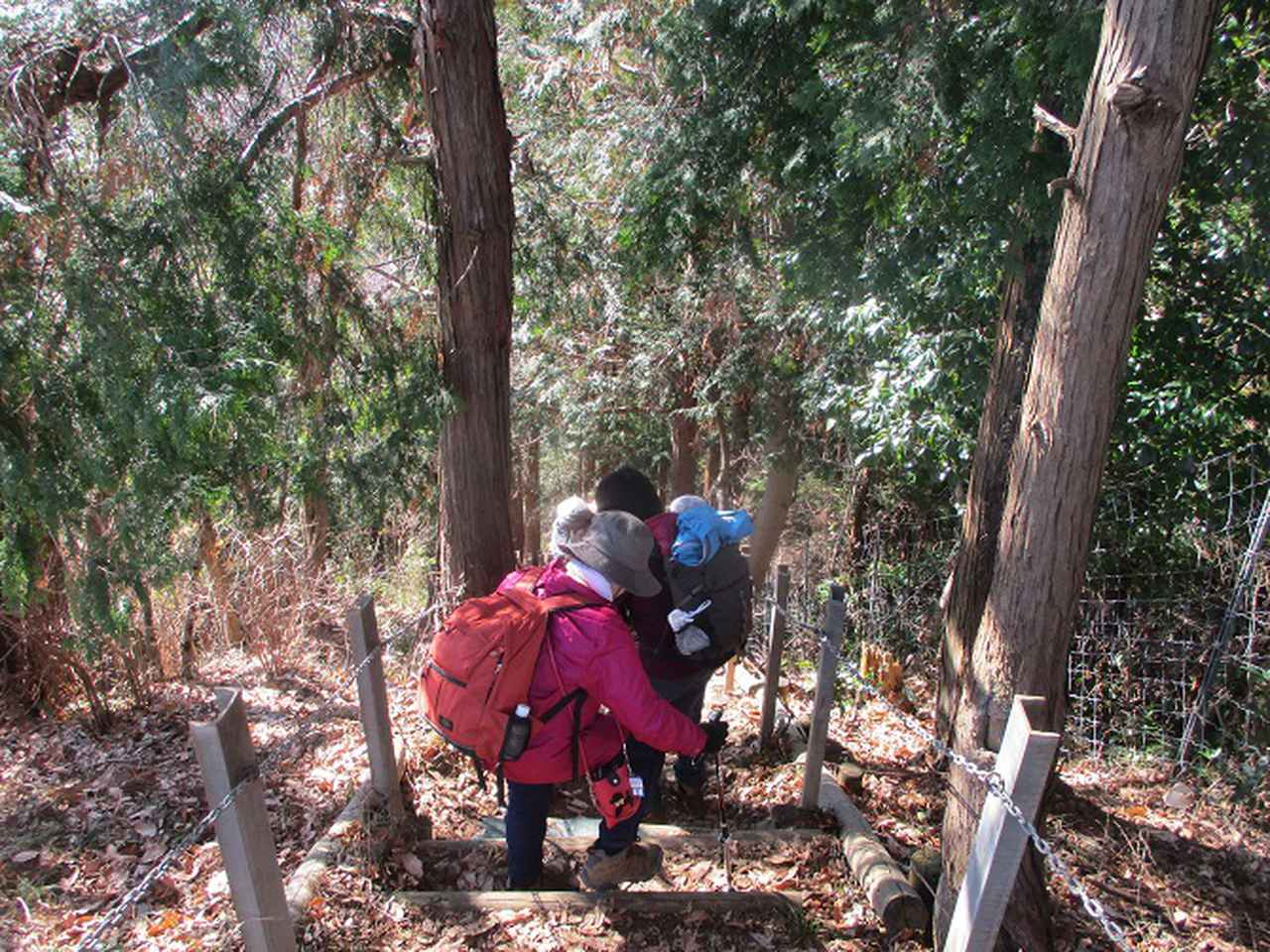 画像11: 1月21日に岡田ガイドのコースで 丹沢白山 へ行ってきました♪
