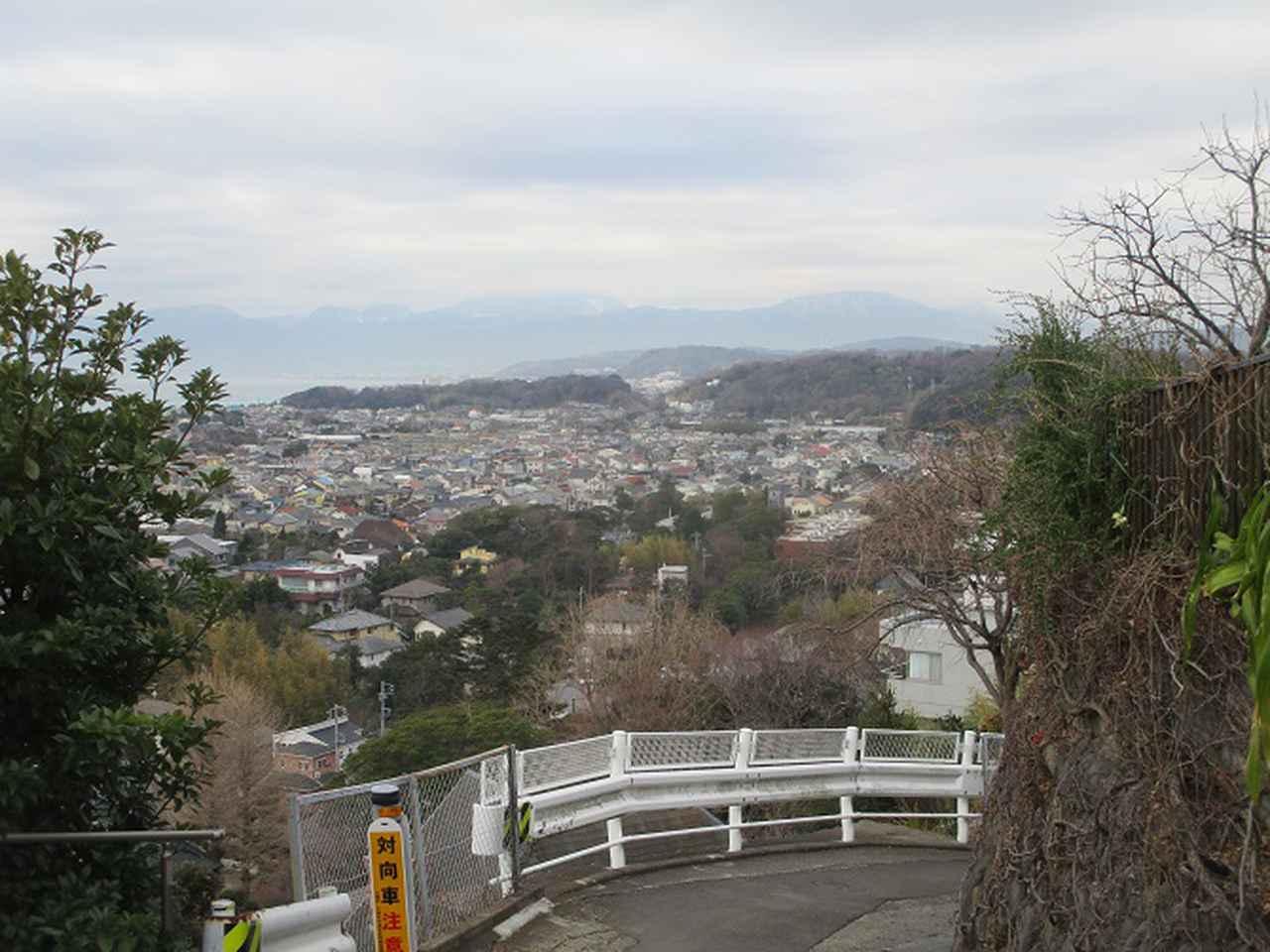 画像12: 2月の山旅会 高麗山 ツアーの下見にいってきました!