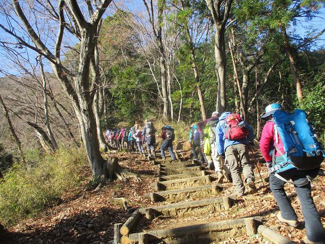 画像5: 1月21日に岡田ガイドのコースで 丹沢白山 へ行ってきました♪