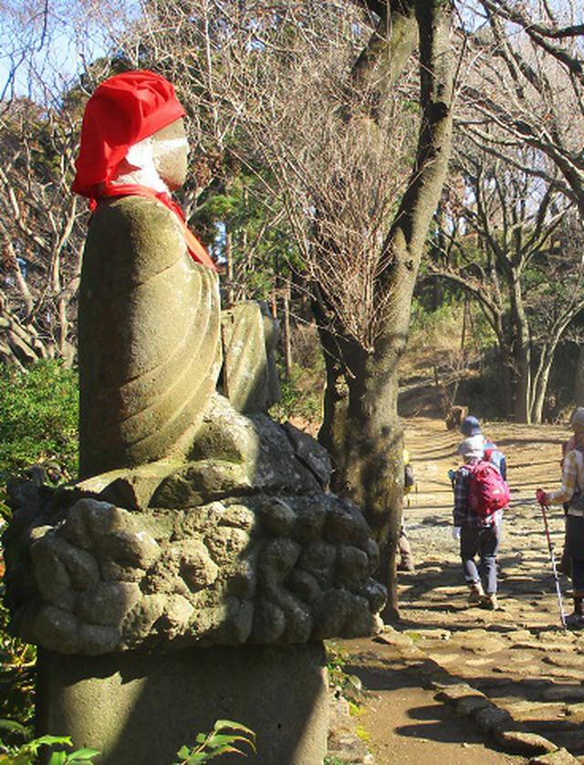 画像12: 1月21日に岡田ガイドのコースで 丹沢白山 へ行ってきました♪