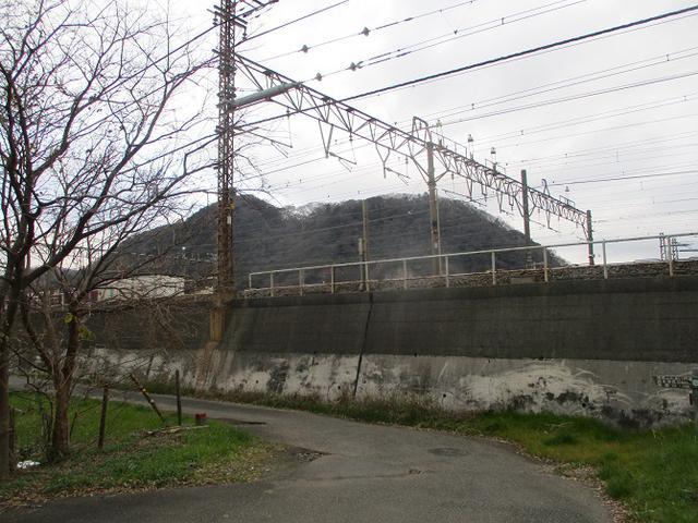 画像1: 2月の山旅会 高麗山 ツアーの下見にいってきました!
