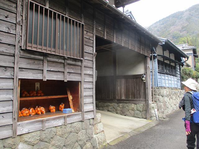 画像2: 1月24日に山旅会 満観峰 ツアーに行ってきました!