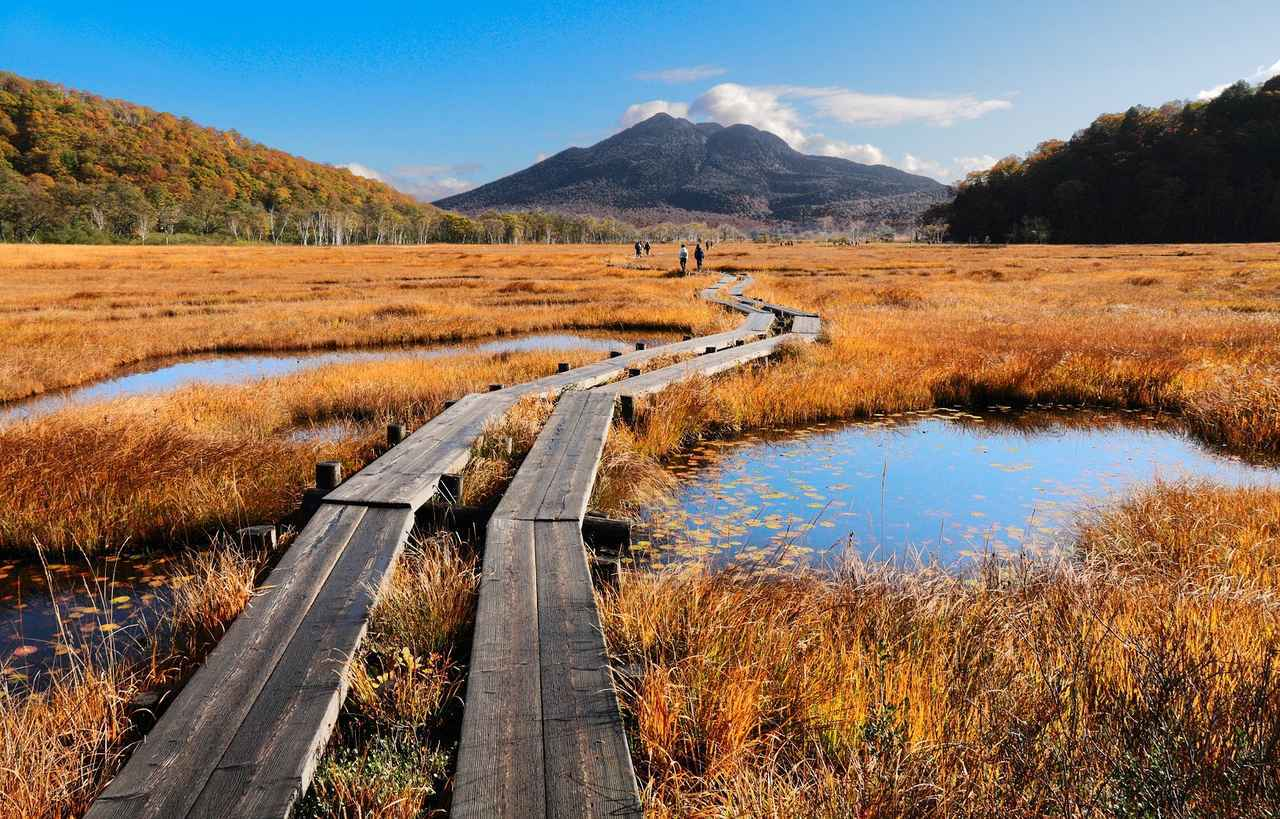 画像: 紅葉に染まる秋の尾瀬