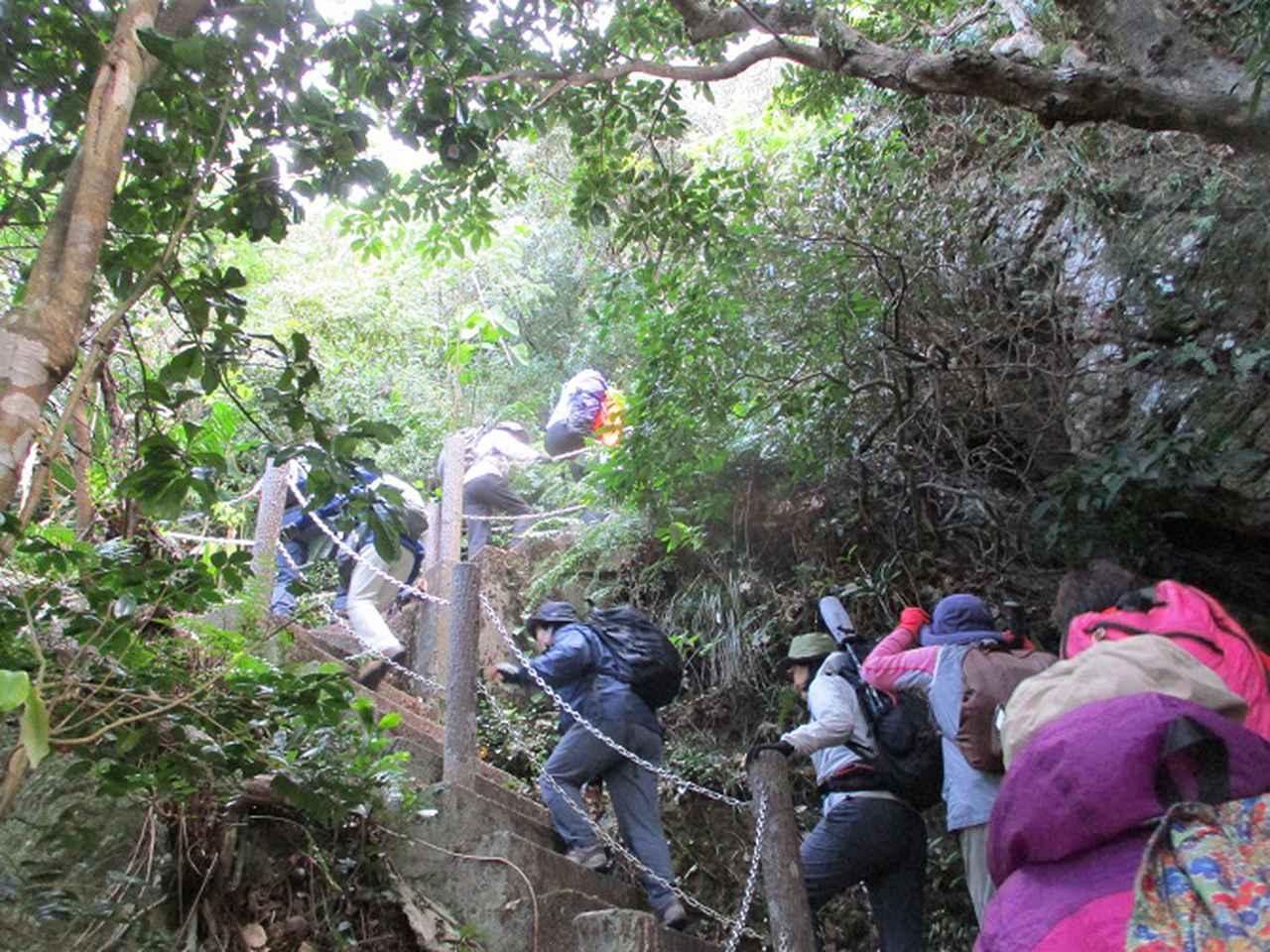 画像3: 岡田ガイドのコースで、1月29日から31日に沖縄へ行って来ました♪