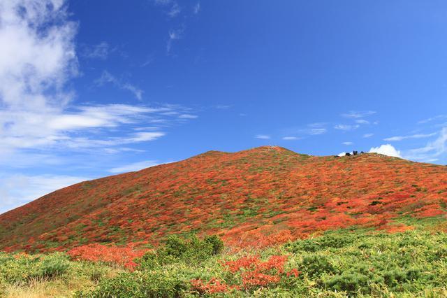 画像: 紅葉時期の栗駒山