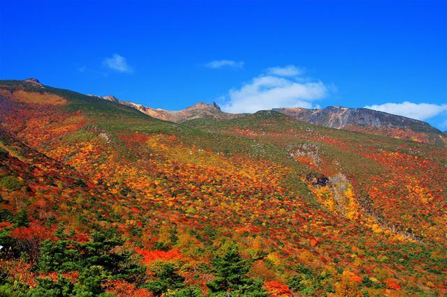画像: 紅葉時期の安達太良山