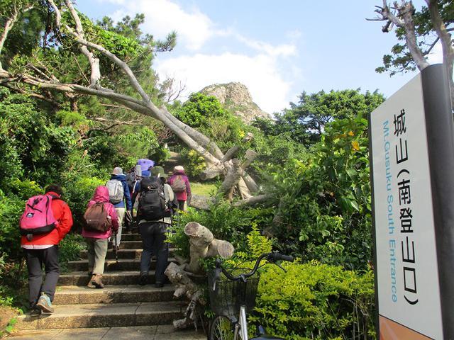 画像11: 岡田ガイドのコースで、1月29日から31日に沖縄へ行って来ました♪