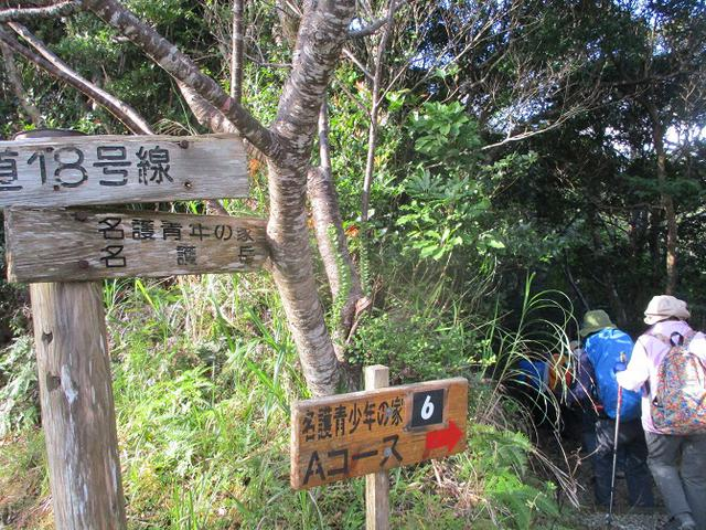 画像7: 1月29日~31日で山旅会 沖縄 ツアーに行ってきました!