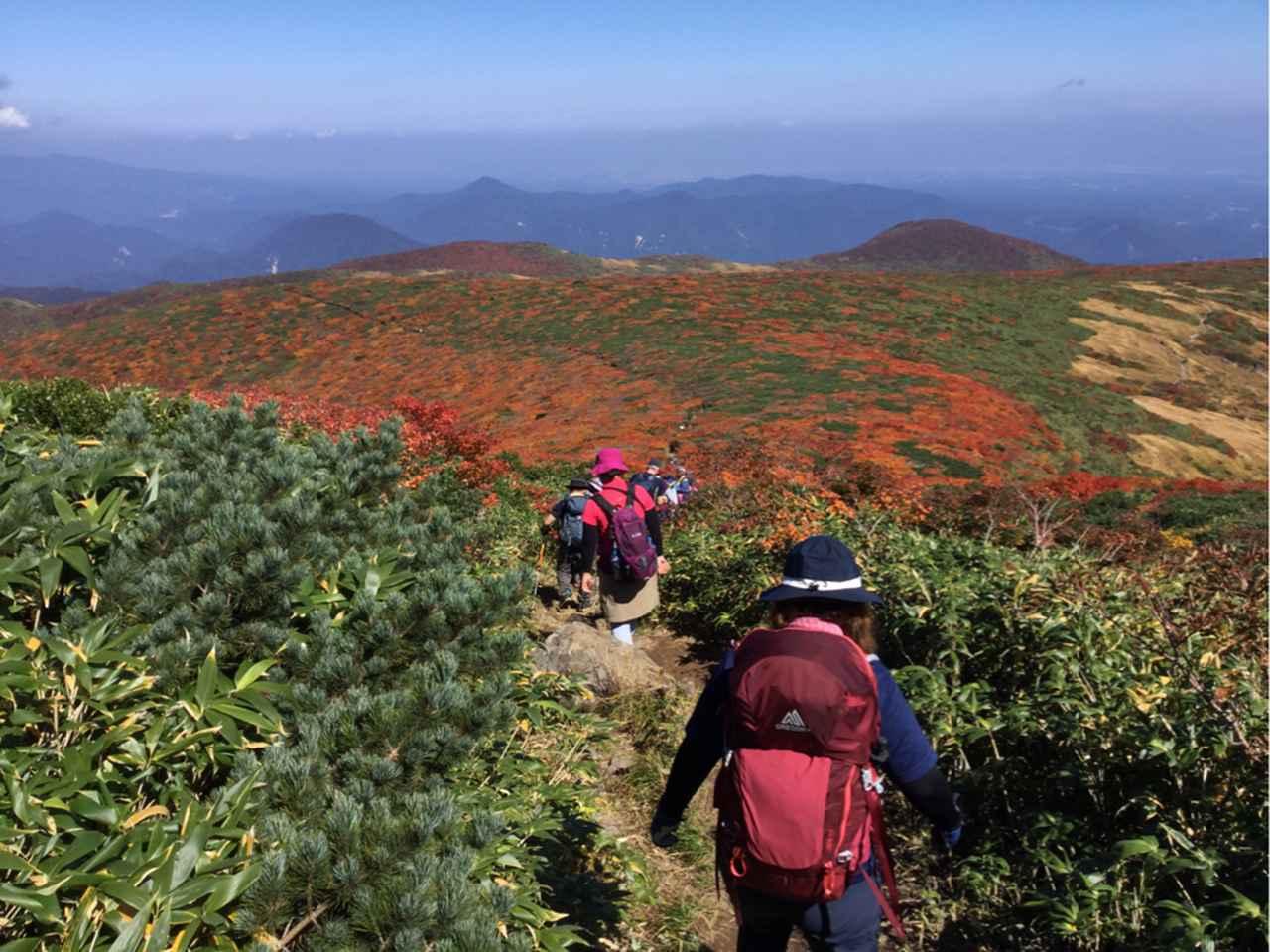 画像: 栗駒山の絶景紅葉を見ながらの山歩きは格別!