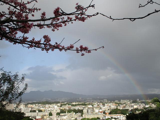 画像3: 1月29日~31日で山旅会 沖縄 ツアーに行ってきました!