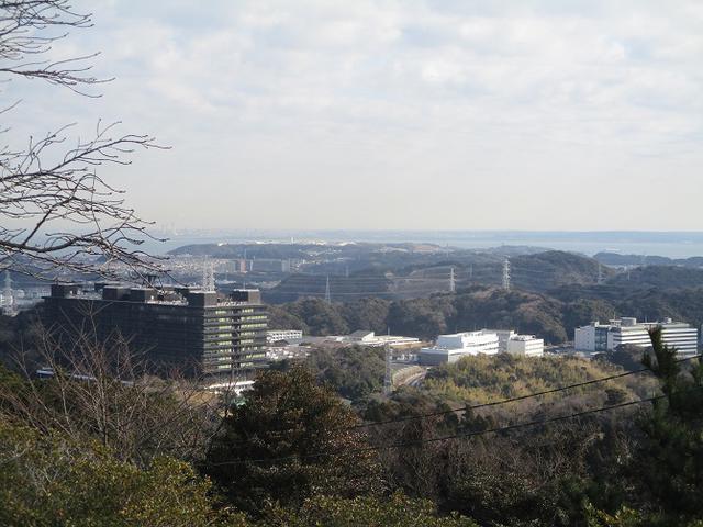 画像10: 2月の山旅会 三浦富士 の下見に行ってきました!