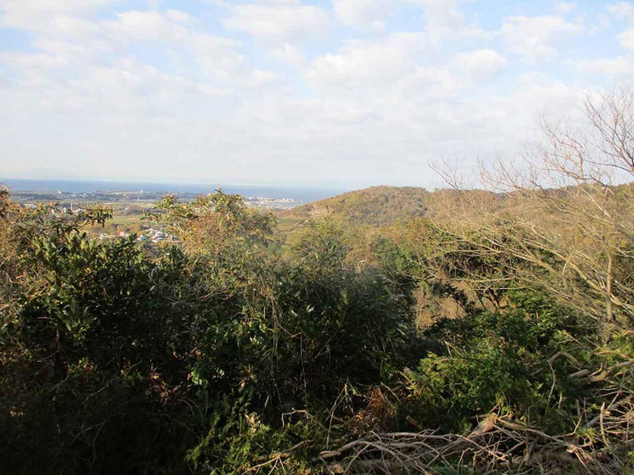 画像5: 2月の山旅会 三浦富士 の下見に行ってきました!